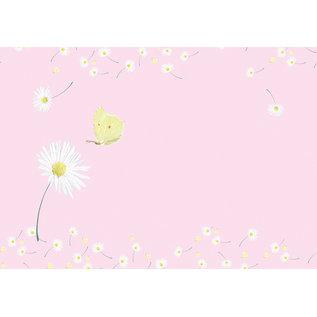 mi653 | m-illu | Pink Daisies - Envelope set C6