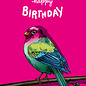 il0295 | illi | Kairo Happy Birthday - postcard  A6