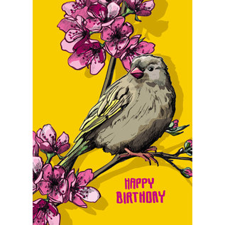 il0300 | illi | Sofi Happy Birthday - Postkarte A6