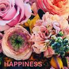 Libelle li002 | Libelle | Happiness - Postkarte
