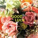 Libelle li003 | Libelle | Good Luck  - postcard