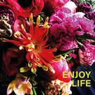 Libelle li007 | Libelle | Enjoy Life - Postkarte