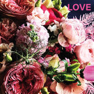 Libelle li008 | Libelle | Love  - postcard