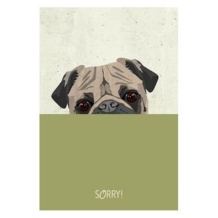 di019   Daria Ivanovna   Mops -Sorry - Postkarte A6