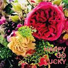 Libelle li012 | Libelle | Happy Go Lucky