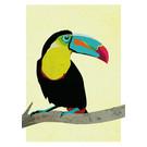 di026 | Daria Ivanovna | toucan