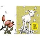 IL9034   illi   Henri With Stars - folding card  B6