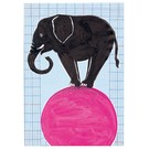 Circus - Elefant