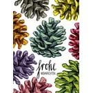 IL0136 | illi | Pine Cones colourful - postcard A6