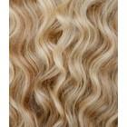 Farbe 12/613 + 613 - Honig Braun / Weiß + Weiß Blond Blond