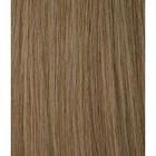 Staart Kleur 16 - Ash Blond