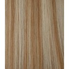 Staart Kleur 27/613 - Camel Blond/ White Blond