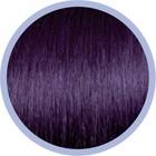 Euro SoCap Ring-On Hauptprogrammerweiterungen 64 New Purple