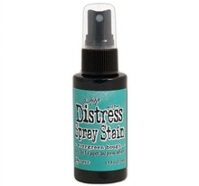 Ranger Distress Spray Stain Evergreen Bought (TSS42259)