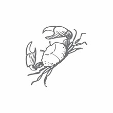 Couture Creations Crabby Mini Clear Stamp (CO726161)