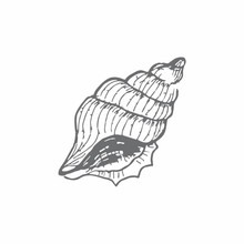 Couture Creations Cerith Shell Mini Clear Stamp (CO726162)