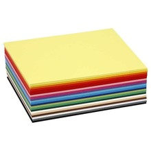 Paperpads.nl SELECT Gekleurd Karton A6 180g (214260)