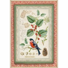 Stamperia Rice Paper A4 Winter Botanic Little Bird on Holly (DFSA4326)
