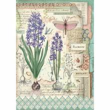 Stamperia Rice Paper A4 Botanic Bulbs (DFSA4363)