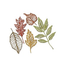 Sizzix Thinlits Alterations Skeleton Leaves (663094)