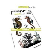 Carabelle Studio Hippocampes Cling Stamps (SA60435)