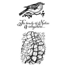 Stamperia Natural Rubber Stamp Cosmos Bird (WTKCCR02)