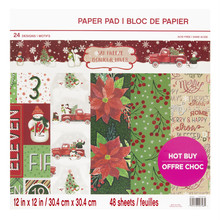 Craft Smith Say Freeze 12x12 Inch Paper Pad (MSE4851)