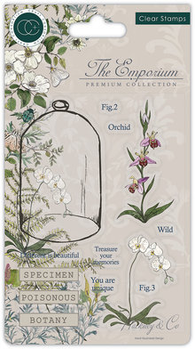 Craft Consortium The Emporium Botany Clear Stamps (CCSTMP020)