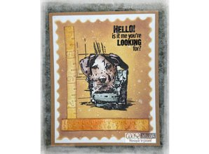 COOSA Crafts #18 Fusion Looking For Me Clear Stamps (COC-101)