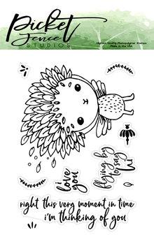 Picket Fence Studios Flying By to Say Hi Clear Stamps (SF-106)