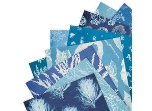 Papermania Anna Atkins Cyanotypes 12x12 Inch Paper Pad (PMA 160410)