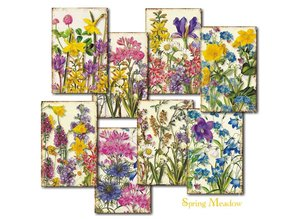 Decorer Spring Meadow Paper Pack  (7x10,8cm) (DECOR-M77)
