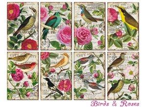 Decorer Birds & Roses Paper Pack  (7x10,8cm) (DECOR-M78)