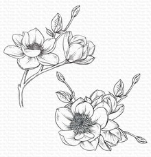 My Favorite Things Magnolia Blossoms Rubber Stamps (BG-122)