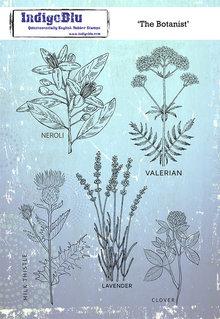 IndigoBlu The Botanist A5 Rubber Stamp (IND0622)