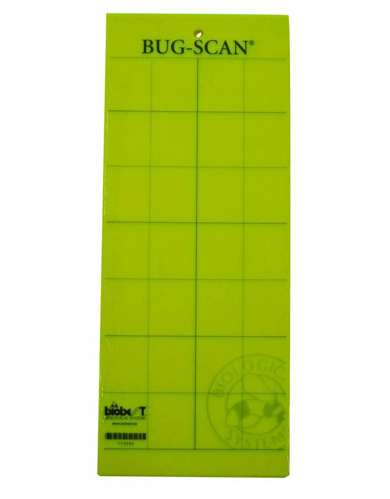 BRIMEX Fang-Gelb-dim Rauchen. 25cm x 10cm 10 Karten