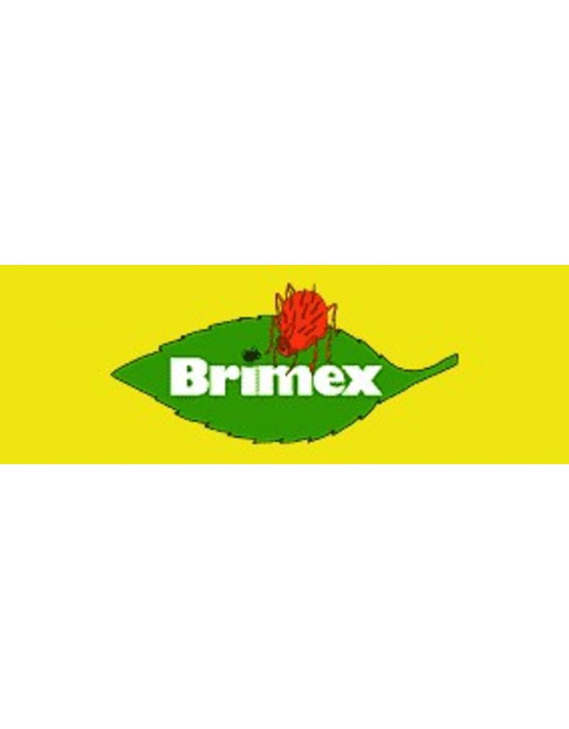 BRIMEX Hypoaspis Miles Raubmilbe 10.000stuks