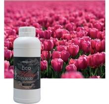 BioquantEcoFlora1liter