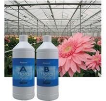 BioQuant, Bio Mineral Flora 5 Liter (A + B)