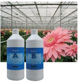 BIOQUANT BioQuant, Bio Mineral Flora 5 Liter (A + B)