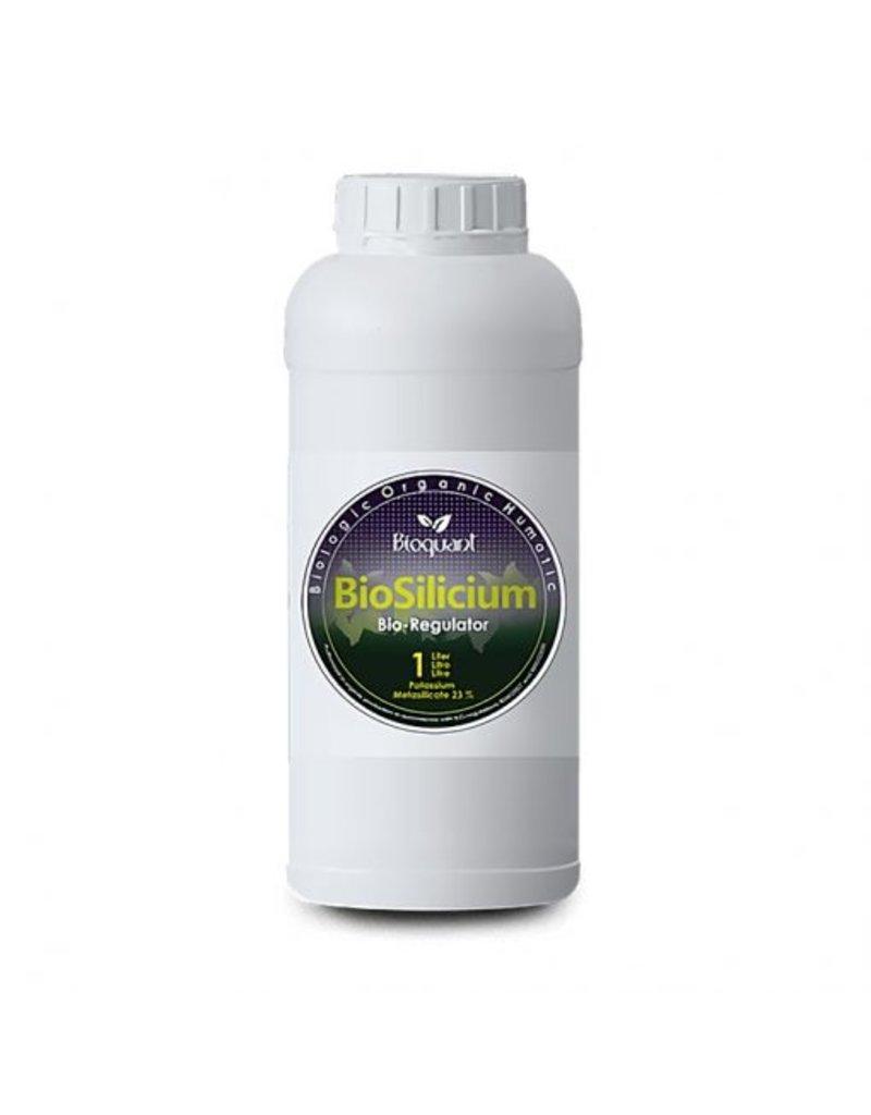 BIOQUANT BioQuant, Bio Sillicium 250ml