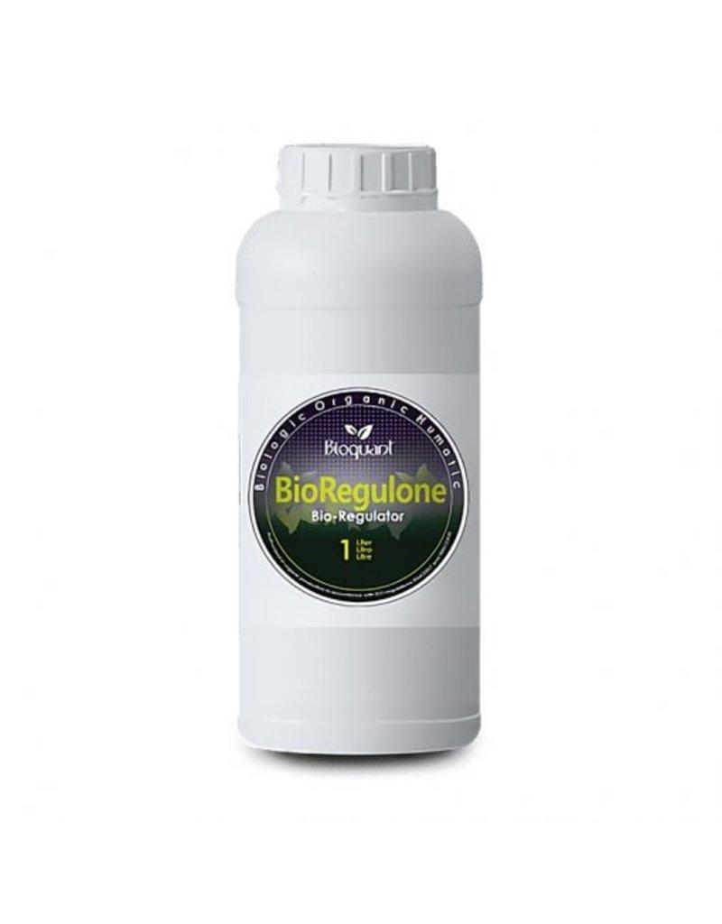 BIOQUANT BioQuant,BioRegulone1ltr