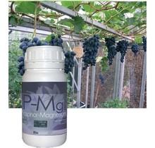 BioQuant,FoliarP-N-Mg250ml