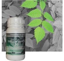 BioQuant,MultiNitro250ml