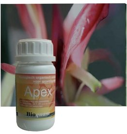 BIOQUANT BioQuant,reg.Apex250mloplossing - Copy
