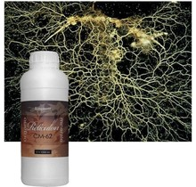 BioQuant,Reticulon250ml