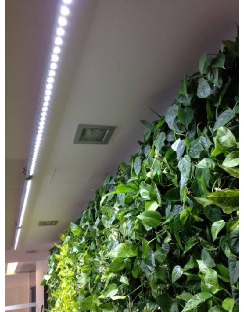 Parus LED wachsen Licht Linear Punkt 150cm 30 °