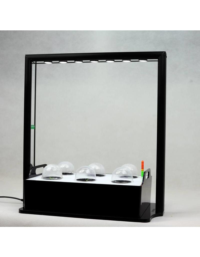 Parus LED wachsen Licht Mini-Bauernhof M10 36cm mit weißem Licht