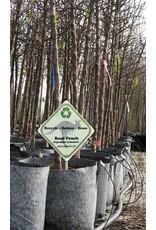 ROOTPOUCH GREY 30 ltr met HANDVAT,10st/bundel, 250gr/m2