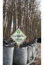 ROOTPOUCH GREY 56 ltr met HANDVAT ,10st/bundel, 250gr/m2